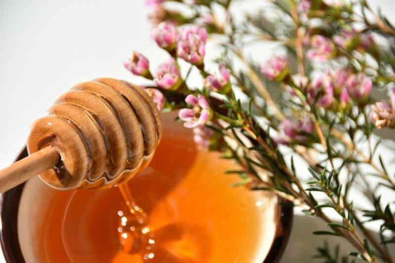 ما هو عسل مانوكا وما فوائده؟ تأثير عسل مانوكا على علاج السرطان ..